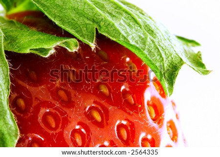 Close up of a strawberry. Super macro