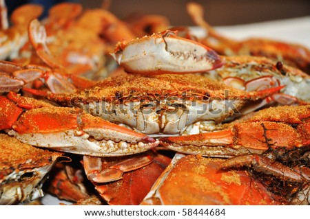 Close up of a table of Freshly Steamed Maryland Blue Crabs