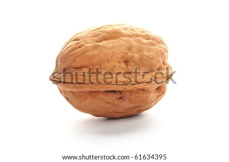 close-up of a walnut isolated on white background