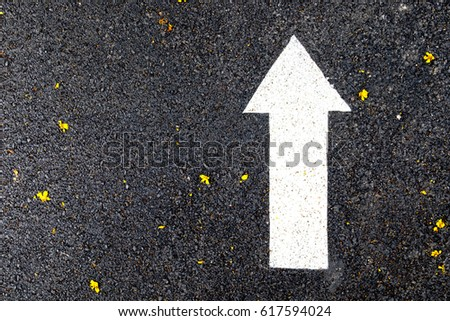 Close up of a white arrow sign on asphalt walking and running lane in the public park, selective focus. #617594024