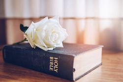 Close up of a white rose on the holy bible on top of wooden table background
