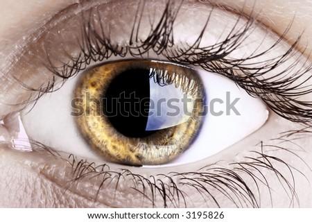 Close up of a woman eye