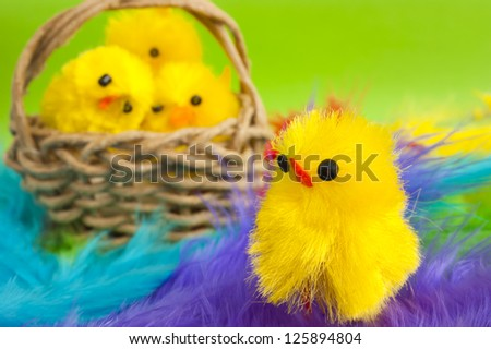 Close up of a yellow Easter fluffy chicken toy, small basket with more chickens stands behind him. Colorful feathers as background. Spring or Easter holiday image.