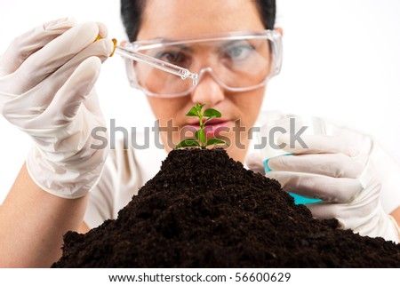 Close up of  agricultural scientist pouring  liquid on a plant  working in laboratory,selective focus on plant