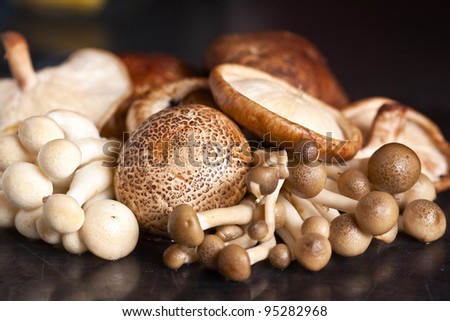 Close up of an assortment of mushrooms