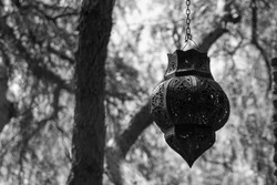 Close-up of an old metal lamp hanging from a chain with pine trunks and twigs in the backgroung on a sunny day