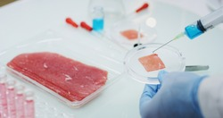 Close up of an young scientist is inspecting and analyzing with syringe the cultured artificial meat sample in laboratory.