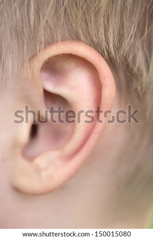 close up of baby ear