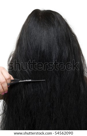 Close up of back of brunette woman  long hair and scissors at saloon isolated on white background