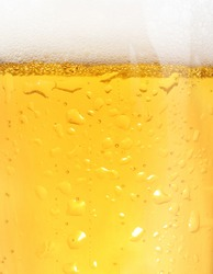 Close up of backlit glass of beer