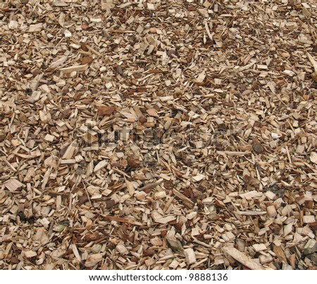 close-up of bark chips