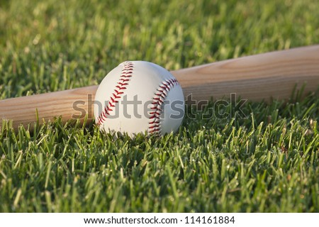 Close up of baseball and bat in the grass in morning sunlight