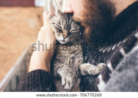 Close-up of beard man in icelandic sweater who is holding and kissing his cute purring Devon Rex cat. Muzzle of a cat and a man's face. Love cats and humans. Relationship, weasel. #706770268