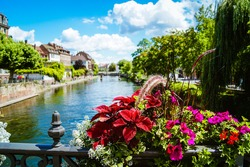 Close-up of beautiful red and pink blooming summer flowers with a river and a bridge in the historic city of Strasbourg, France in the background.