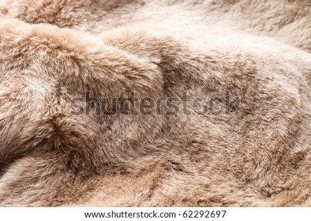 Close up of beige fur - stock photo