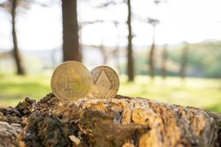 Close-up of Bitcoin and Ethereum on a tree stump outdoor with green natural blurred forest background with copy space. Gold BTC and ETH cryptocurrency coins, ecological impact, energy consumption