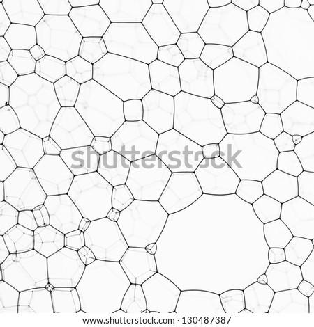 Close up of black  bubbles against glass