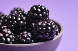 Close-up of blackberries in a bowl, minimal. Bowl of blackberry fruits isolated on a purple background. Ripe blackberry fruits macro image.