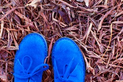 close-up of blue suede shoes in autumn leaves