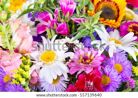 close up of bouquet of various summer flowers as background. #557139640