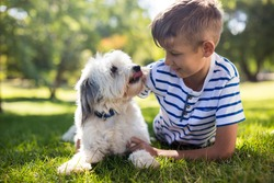 Close up of boy with dog in park on sunny a day
