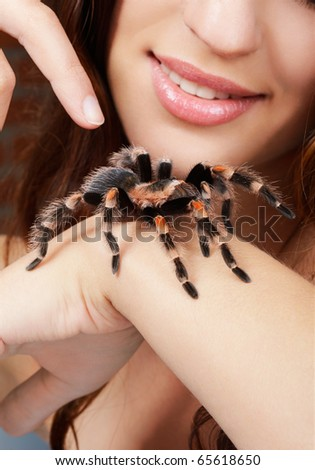 close-up of brachypelma smithi spider sitting on girl's hand