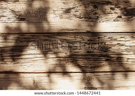 Close up of bright brown Wooden Plank Background. Nature concept. Pic for design with texture. Copy space. Abstract, grunge and old Vintage wood plank.