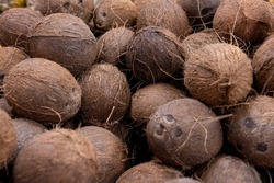 Close-up of brown coconuts with texture.