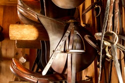 close up of brown Saddles in a Tack Room