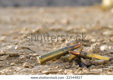 close up of bullets on dessert ground