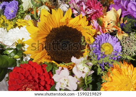 Close up of bunch of flowers