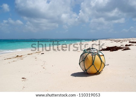 Close up of buoy on the beach
