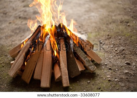 Close up of burning camp fire, shallow depth of field