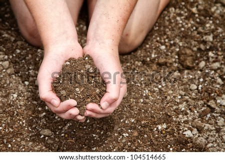 Close-up of child's hands holding dirt