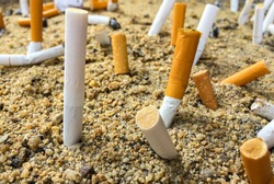 Close up of cigarette filters in sand tray. The sand was littered with fag ends.