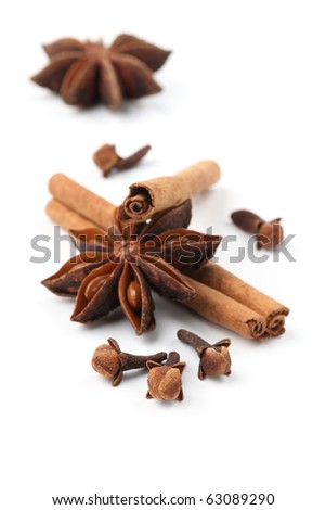 Close-up of cloves, anise and cinnamon on white background. Shallow dof