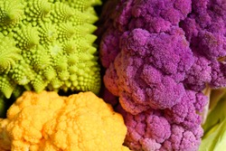 close up of colorful cauliflower and romanesco cabbage