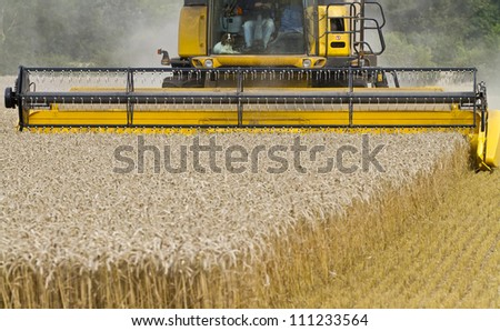 Close up of Combine harvester at work cutting cereal