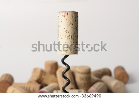 close-up of cork on corkscrew with more corks background - stock photo