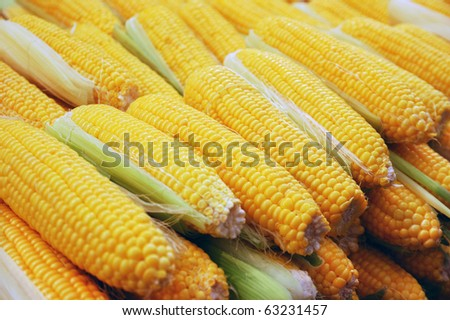 close up of corn on market stand