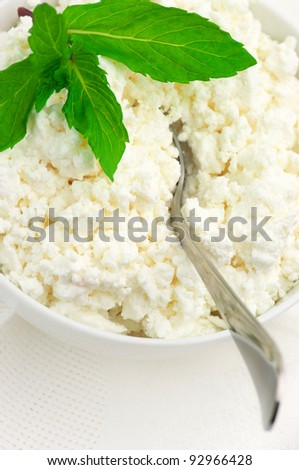 Close-up of cottage cheese with mint and spoon in white bowl.
