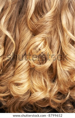 Close-Up Of Curly Blond Hair Stock Photo 8799652 : Shutterstock