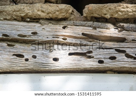 Close-up of damaged wood, rooftop details. Texture and details, rural background