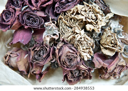 Close up of die roses on dried flower market for decoration. Bouquet. Past valentine day.