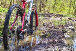 close-up of dirty wheels and the bottom of a bicycle on forest trails. View from bike wheel in puddle of mudd