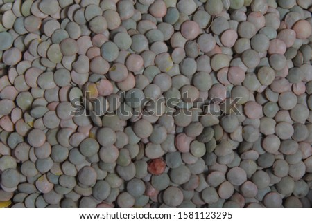 Close up of dried green lentils. Green lentils pattern as background. #1581123295