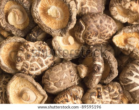 close up of dried shiitake mushrooms food background