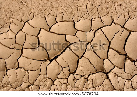 Close-up of dry soil in arid climate. Cracked ground in a desert.