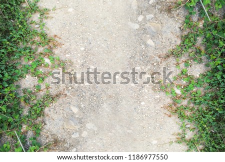 close up of earthy road with green grass in the corners