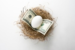 Close up of egg and money in bird nest representing retirement nest egg or savings.